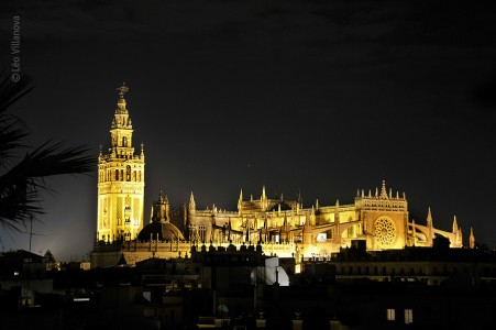 - Catedral noturna 800
