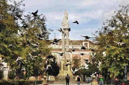 - Plaza del Triunfo 800