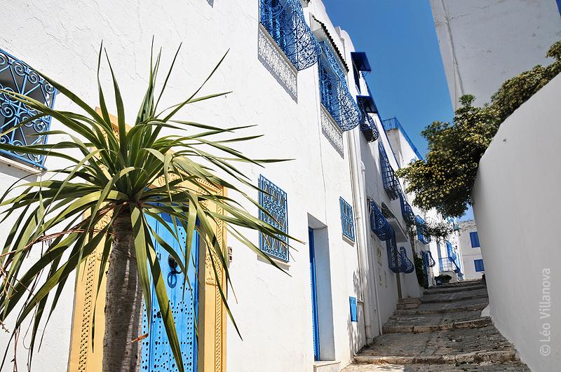 Sidi Bou Said- 01
