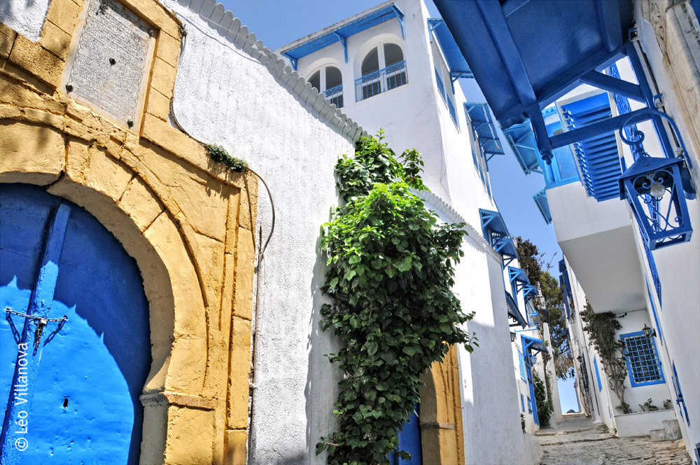 Sidi Bou Said- 15